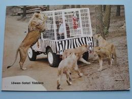 SAFARI-INN Tüddern Löwen Safari ( Schmidt & Löffelhardt ) Anno 19?? ( Voir Photo ) ! - Heinsberg