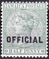 """JAMAICA 1891 1/2d Green """"Official"""" SGO3 MH - Jamaica (...-1961)"""