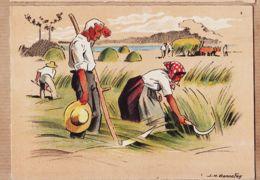 BD146 Barré & Dayez 1302 A  Agriculture Série FENAISON Dans La VALLEE Illustrateur BONNEFOY - Imprimé En 1943 Cpagr - Cultures