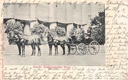 Durchl. Erbherrschaften Reuss J. L Postcard - Koninklijke Families