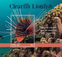 Palau 2019  Fauna Clearfin Lionfish  I201901 - Palau