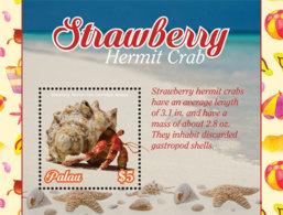 Palau 2019  Fauna  Strawberry Hermit Crab I201901 - Palau