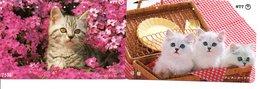 2 Télécartes Japon Japan Chat Cat  Katze Phonecard (D 645) - Gatos