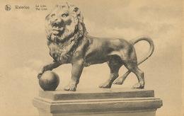 Sculpteur Jean Louis Van Geel Né à Malines Lion De Waterloo Fonderie Cockerill Seraing Edit Thill Nels - Malines