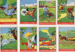9 Chromos - Images - Collection Des Fables De La Fontaine - FLAN  IMPERIAL.  La Madeleine Lez Lille. 59 - Chromos