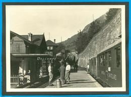 Suisse Valais Martigny * Gare De Salvan Vers 1935, Train Châtelard Vallorcine * Photo Originale 12 X 17cm - Places