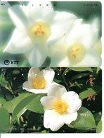 2 Télécartes Japon Japan  Fleur Flower  Phonecard (D 669) - Fleurs