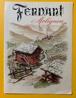 10664 - Fendant  Molignon  Valais Suisse Ancienne étiquette - Etiquettes