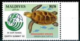 MALDIVES 1992** - Tartaruga / Turtle - 1 Val. MNH, Come Da Scansione. - Tartarughe