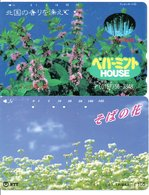 2 Télécartes Japon Japan  Fleur Flower  Phonecard (D 680) - Fleurs