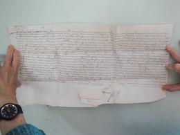 Parchemin Manuscrit Sur Peau 42 Par 23 Cm 16ème Sciècle à Déchiffrer - Manuscripts