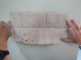Parchemin Manuscrit Sur Peau 32 Par 18 Cm  à Déchiffrer - Manuscripts