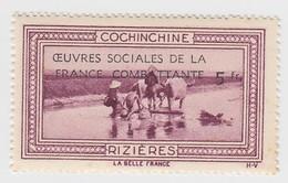 VIGNETTE  INDOCHINE. OEUVRES SOCIALES DE LA FRANCE COMBATANTE + 5fr. COCHINCHINE RIZIERES - Indochine (1889-1945)