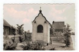 Begijnendijk  St.Lucia Kapelleke - Begijnendijk