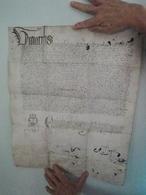 Parchemin Manuscrit Sur Peau 45 Par 36 Cm  à Déchiffrer - Manuscripts