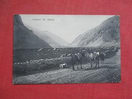 Camino De Juncal    Ref 3426 - Chile