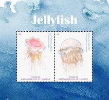 Canouan Grenadines Of St. Vincent 2018  Jellyfish  Fauna I201901 - St.Vincent & Grenadines