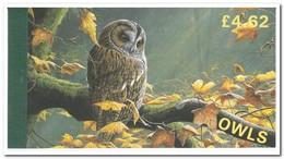 Man 1997, Postfris MNH, Owls, Birds ( Booklet, Carnet ) - Man (Eiland)