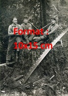 Reproduction D'une Photographie Ancienne De Bûcherons Assis Sur La Souche D'un Arbre Fraîchement Coupé - Repro's