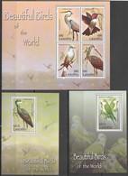 L1059 2007 LESOTHO FAUNA BEAUTIFUL BIRDS OF THE WORLD !!! 1KB+2BL MNH - Oiseaux