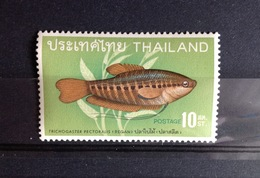 Thailand 1968 Fish 1 Value MNH - Fishes
