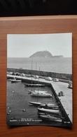 Alassio - L'Isola Gallinara Dal Porticciolo - Savona