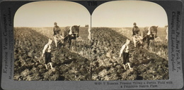 N° 18101 Photos Stéréoscopiques -  Agriculteur Russe Labourant Un Champ Avec Une Charrue Indigène Primitive - TBE - Stereoscopio