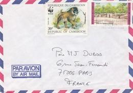 LETTRE CAMEROUN D'IVOIRE POUR LA FRANCE - Cameroun (1960-...)