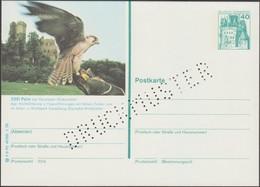 Allemagne 1978. Carte Postale, Entier Officiel Touristique, Perforation « Druckmuster », Spécimen. Pelm, Fauconnerie - Eagles & Birds Of Prey