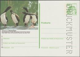 Allemagne 1980. Carte Postale, Entier Touristique, Perforation « Druckmuster », Spécimen. Conciliabule De Bestioles - Oies