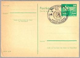 IV CONFERENCIA INTERN. DEL SANSCRITO - World Conference Of Sanskrit. Weimar 1979 - Idioma