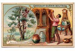 CHROMO Chocolat GUERIN - BOUTRON : Bois De PERNAMBOUC. - Guerin Boutron