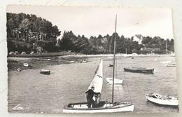 Carte Postale N°7363 Arradon - La Cale Et La Plage - Loic - RE - Arradon