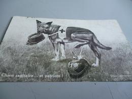 CARTE POSTALE   LE CHIEN SANITAIRE ET PATRIOTE QUI URINE SUR LE CASQUE A POINTE     GUERRE 14/18 - 1914-18