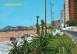 BENIDORM-  VIAGGIATA 1959  -F.G - Alicante