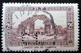 ALGERIE YT 120 PERFORE CL - Algeria (1924-1962)