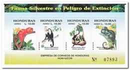 Honduras 2004, Postfris MNH, Monkeys - Honduras