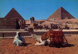 CPM - Giza : Les Pyramides - Piramidi