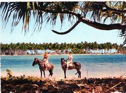"""Cpsm - Moorea - Chevauchée Sur La Plage Du """"club Méditerranée"""" - - French Polynesia"""