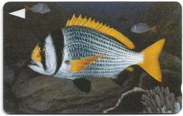 Bahrain - Fish Of Bahrain - Doublebar Bream - 40BAHK (Normal 0), 1996, Used - Bahrein
