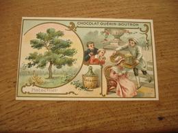 Pistachier Chromo Serie Les Arbres Chocolat Guerin Boutron E - Guerin Boutron