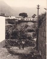 TENERIFE BUENAVISTA 1956 Photo Amateur Format Environ 7,5 Cm X 5,5 Cm - Lugares