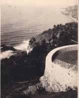TENERIFE 1921 Route D'OROTAVA à ICOD  Photo Amateur Format Environ 7,5 Cm X 5,5 Cm 2 Petites Photos - Lugares
