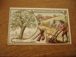 Erable Charrue Serie Les Arbres Chocolat Guerin Boutron E - Guerin Boutron