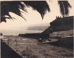 TENERIFE 1921 PUERTO DE LA CRUZ Photo Amateur Format Environ 7,5 Cm X 5,5 Cm   BARRANCO - Lugares