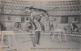 Wilhelm Hagenbeck's Grösste Raubtier Dressur Schau Der Erde - Cirque Circus - Dompteur De Lion Et Tigre - Tiger Lions - Circo