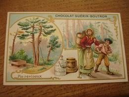 Pin Resineux Serie Les Arbres Chocolat Guerin Boutron E - Guerin Boutron