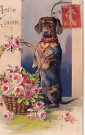 CPA Gaufrée Animal Chien Teckel Faisant Le Beau Dackel Daschsund Panier De Roses Embossed  Illustrateur (2 Scans) - Chiens