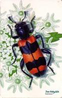 REPUBLICA CHECA. FAUNA - ESCARABAJO. Beetle Trichodes Apiarius. C312, 16/04.00. (002) - Insectos