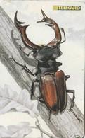 REPUBLICA CHECA. FAUNA - ESCARABAJO. Beetle LUCANUS CERVUS. C278B, 18/03.99. (132) - Insectos
